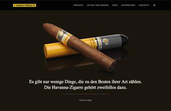 Screenshot Ausschnitt von der Startseite der neuen 5th-Avenue Products Trading-GmbH Website