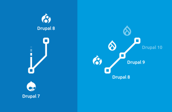 Gafik: Drupal Upgrade Branches